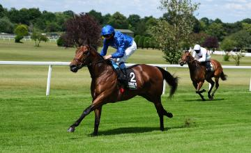Picture of Lazuli (IRE)