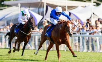 Picture of Earthlight (IRE)